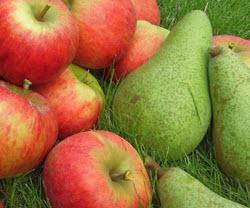 груши яблоки