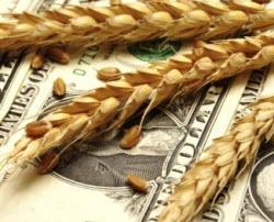 сельхозорганизации